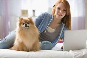 宠物狗很多错误可能都是主人的问题